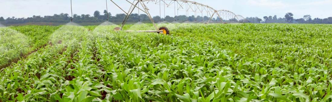 Automatic irrigation technology for field