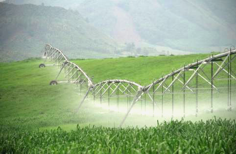Automatic irrigation technology gold field